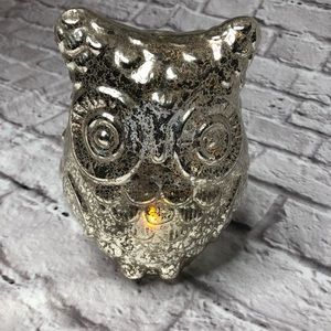 Other - Illuminated Owl